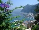 Capri l'île bleu