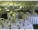 Weeding reception